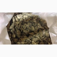 Топинамбур корень (оптом от 5кг)
