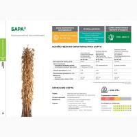Семена сои: сорт БАРА селекции Компании Соевый комплекс