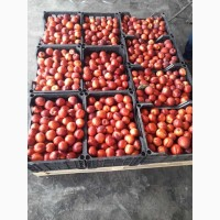 Продаем нектарин с Азербайджана