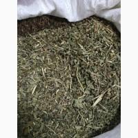 Ежевика сизая резанная 7-10 мм