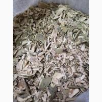 Осина (кора) (оптом от 5кг)