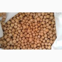 Семена Нута «Приво1» ЭС и РС1