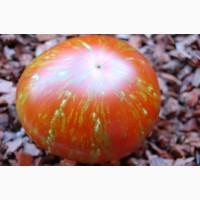 Семена редких коллекционных сортов томатов и перцев. Фото и описание сортов