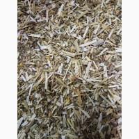Желтушник рез 7-10 мм (оптом от 5кг)