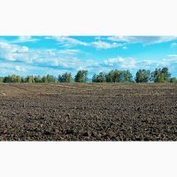 Продается шикарный земельный участок 6400 соток