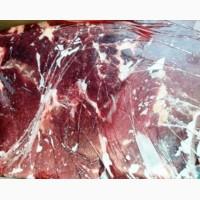 Продам говядину, блочную, 1 сорт, бескостную