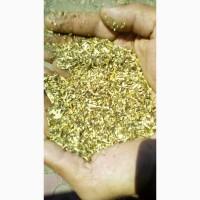 Продам лекарственные травы (череда) ОПТОМ 1, 7 т