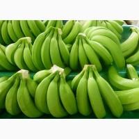 Продаем бананы Эквадор Камерун Мексика Судан