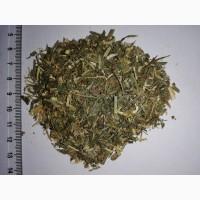 Галега, трава, реализация
