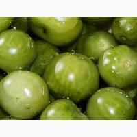 Продаем помидоры зеленые бочковые 40р