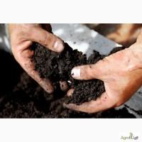 Земля плодородная, Почвогрунт, Грунт плодородный