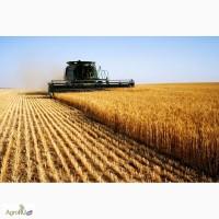 Продаю сельхоз предприятие в Краснодарском крае 3900 Га