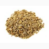 Укроп семя (оптом от 5кг)