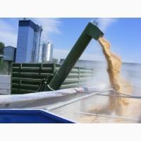 Перевалка зерновых по воде