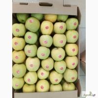 Продаем Яблоки Голден Экстра