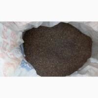 Базилик лист рез. Египет (оптом от 5кг)