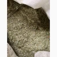 Астрагал шестистоцветковый трава (оптом от 5кг)
