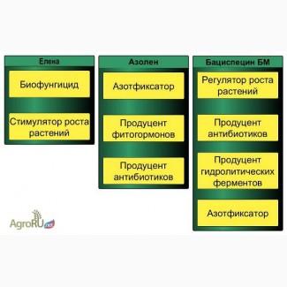 Регулятор роста растений Бациспицин БМ