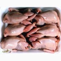 Мясо перепелиное охлажденное (тушки, фермерские)
