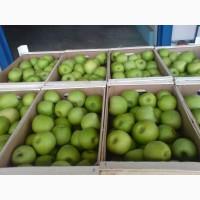 Оптовая партия яблок Муцу готова отправиться по адресу заказчика
