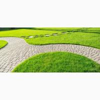 Травосмесь «Садово-парковая»