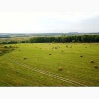 Продаём сено вика-овёс и травосмеси в рулонах 2017 года, Московская обл