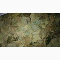 Лавровый лист сушеный и молотый