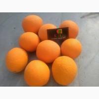 Продам апельсины из Египта