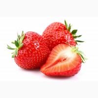 Свежие ягоды в ассортименте