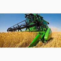 Продаем пшеницу 3, 4, 5 класса, кукурузу, ячмень, овес, рапс