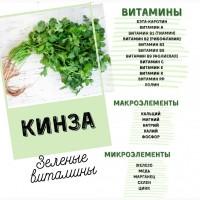 Кинза, свежая зелень в ассортименте