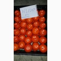 Продам мандарины из Египта