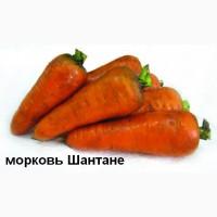 Морковь-9ркг