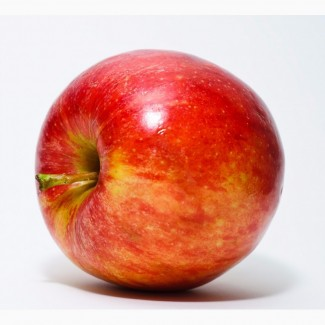 Куплю недорогие яблоки 55