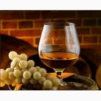 Винный виноград голубок белый