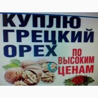 Куплю ядро грецкого ореха