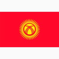 Оптом фасоль производства Киргизия