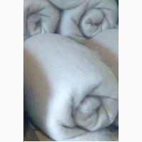 Шерсть овечья чёсанная полугрубая цвет белый