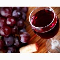 Винный виноград саперави северный красный