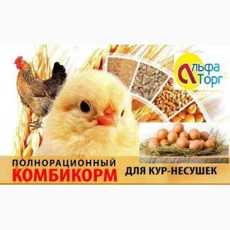 Комбикорм полнорационный ПК-1-2-18 для КУР несушек(48недель и старше)