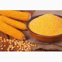 Кукурузная крупа 3, 4, 5, 6, экстра, белая ГОСТ, ТУ