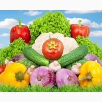Органические сельхозпродукты