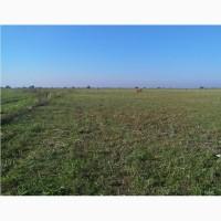 Земельный участок сельхозназначения 920 Га