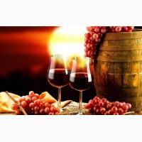 Виноград винный сорта Алиготе