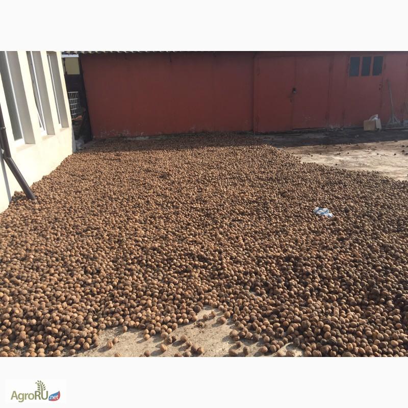 грецкий орех продам в майкопе электропровод через изогнутую