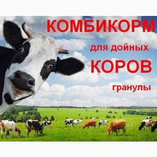 Комбикорм для дойных коров КК-60/1(гранулы)