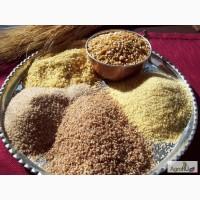 Серые (пшеничные, ячменные) крупы: пшеничная, ячневая, перловая