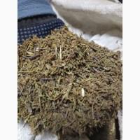 Багульник болотный рез. 7-10 мм (оптом от 5кг)