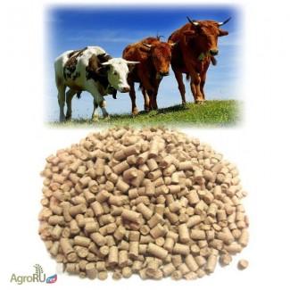 Комбикорм для КРС, комбикорм для дойных коров и нетелей