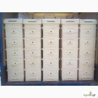Улей для пчеловодов на 8 рамок
